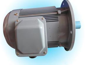 B5电动机